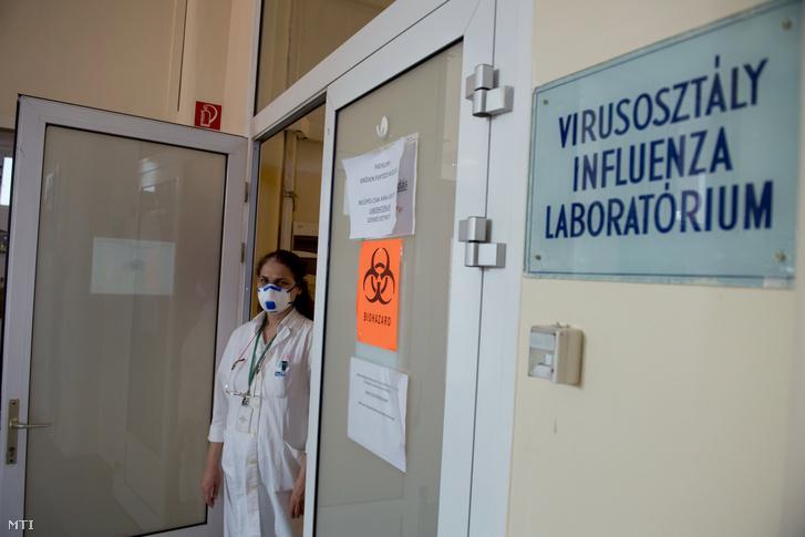 Barcsay Erzsébet, a Nemzeti Népegészségügyi Központ Virológiai Laboratóriumi Osztályának osztályvezetője Budapesten 2020. április 3-án. Az ország legnagyobb, kifejezetten virológiai diagnosztikával foglalkozó laboratóriumában a járvány miatt koronavírusteszteket végeznek.