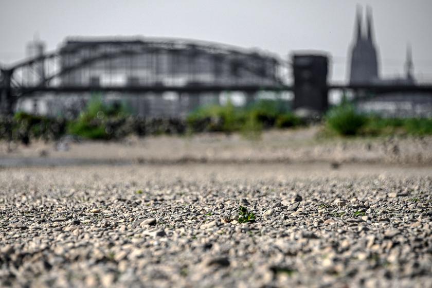 A Rajna kiszáradt medre a kölni dóm előtt 2020. április 23-án.