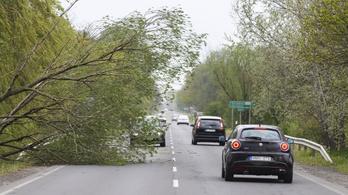 Szombat estig 140 viharkárhoz riasztották a katasztrófavédelmet