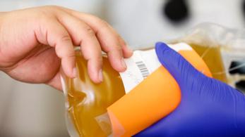 Biztató eredményeket hozott Floridában a vérplazma-terápia