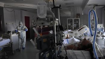 A magyar orvosi egyetemek már az elejétől tudták: rengeteget kell tesztelni