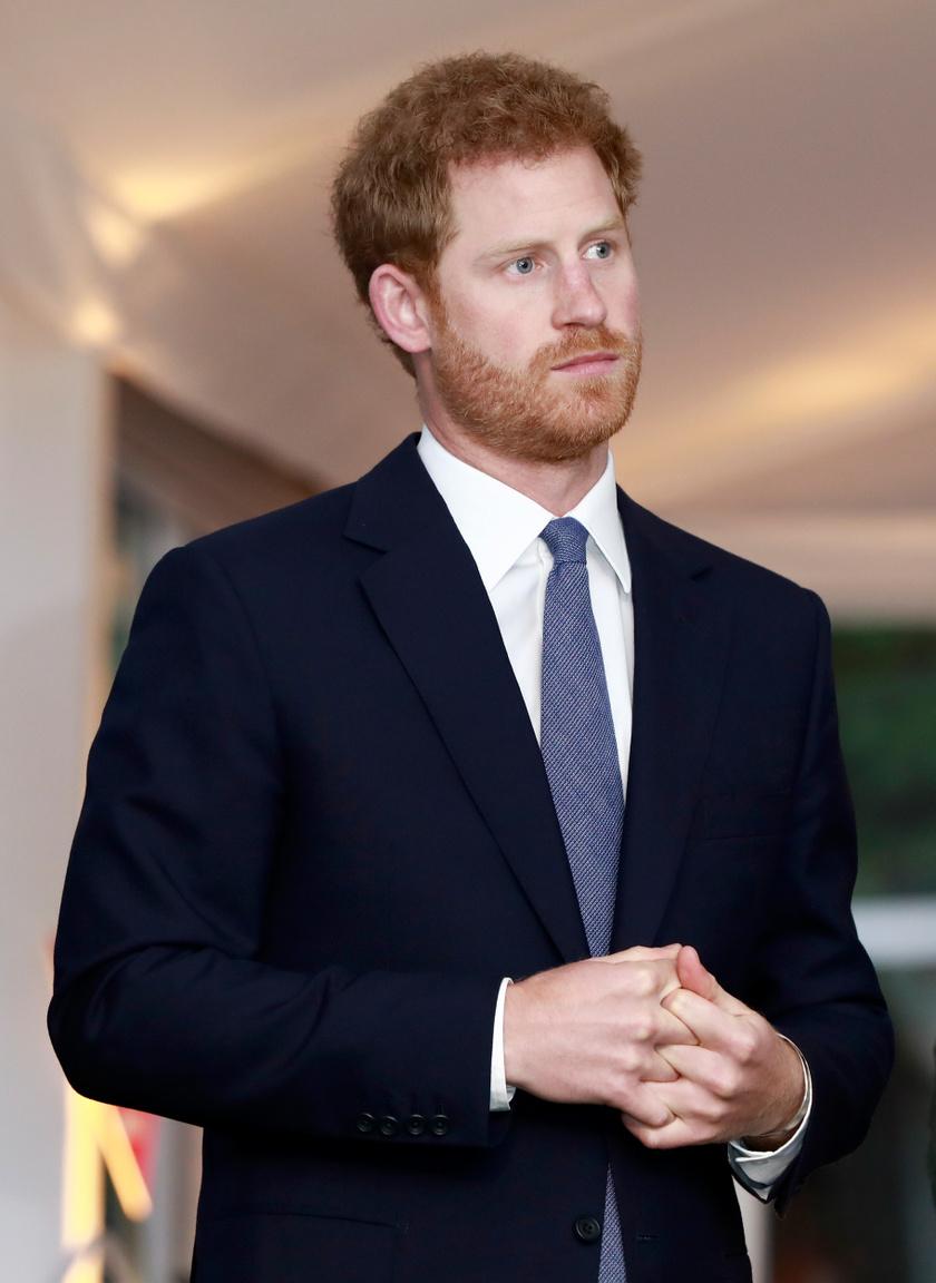 harry herceg