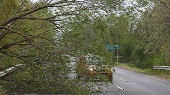 Több százmillió forint kárt okozhattak a hétvégi szélviharok