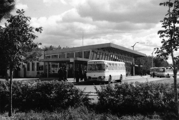 Buszpályaudvar, busszal