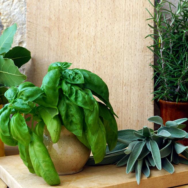 Ezért érdemes a konyhában növényt tartani – A kedvünk és a levegő is jobb lesz tőle
