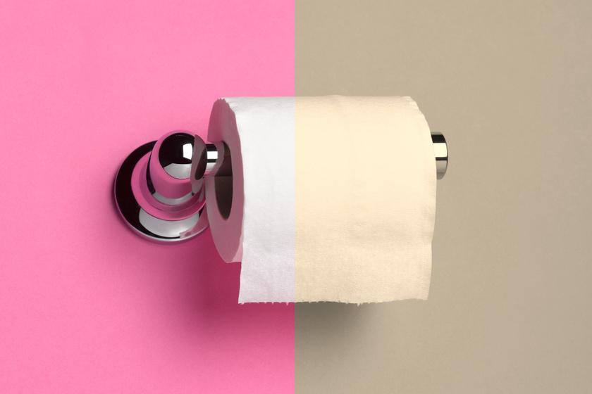 Mikor találták fel a WC-papírt, és mit használtak korábban az emberek?