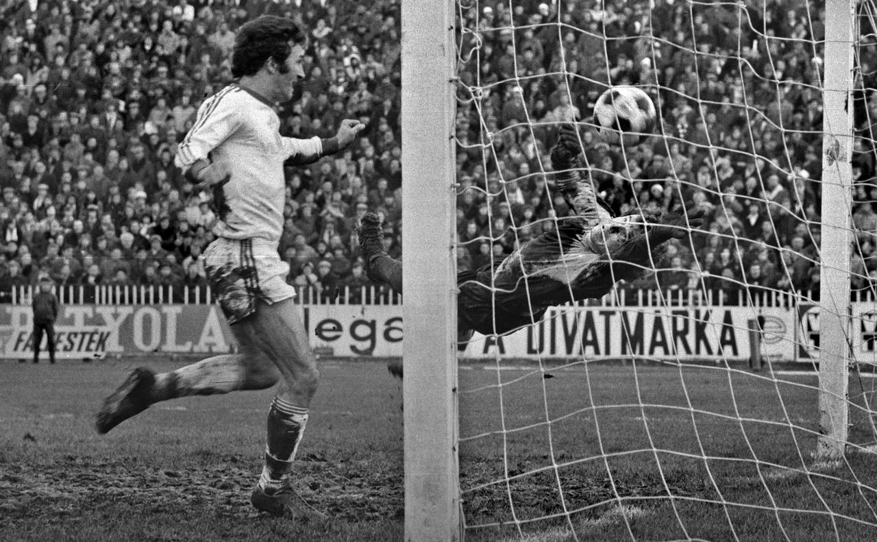 1976.11.30                         Hajdu József