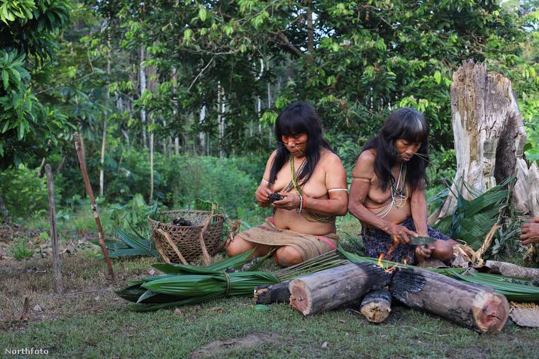 Bár a matse törzs elvonultan él, a turisták elől nem tudtak teljesen elbújni, akik néha felfedezik viskóikat