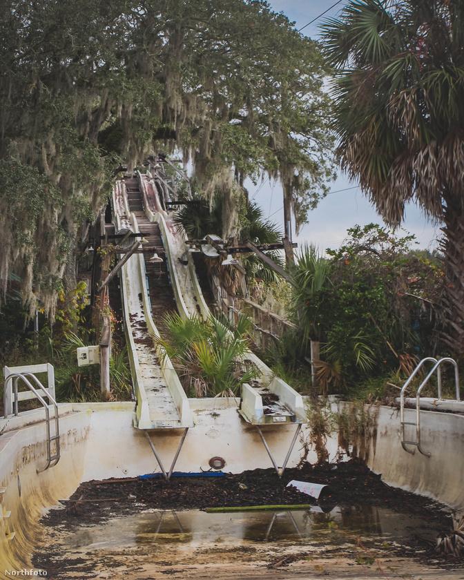Ez itt ugyanis a floridai Wild Waters Park névre hallgató kalandpark, amelyben olyan klasszikusok jeleneteit forgatták le annak idején, mint a Tarzan, vagy a Fekete lagúna teremtménye.