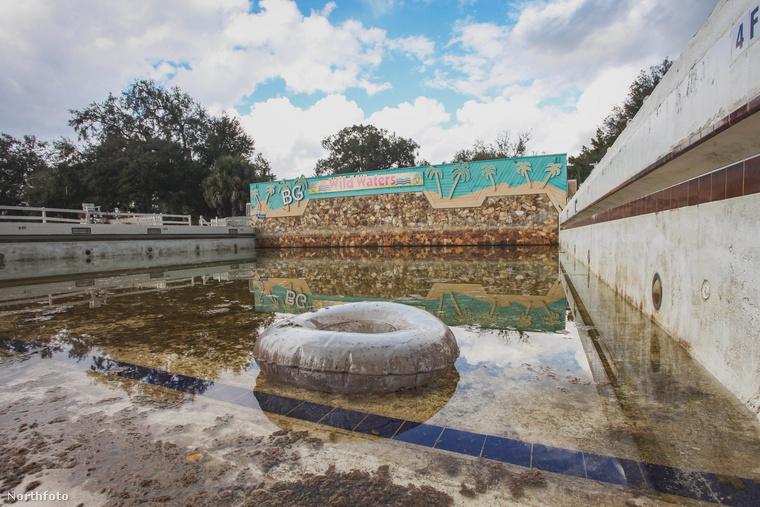 Magányosan úszkáló fánkocska az egyik esővízzel megtelt medencében.