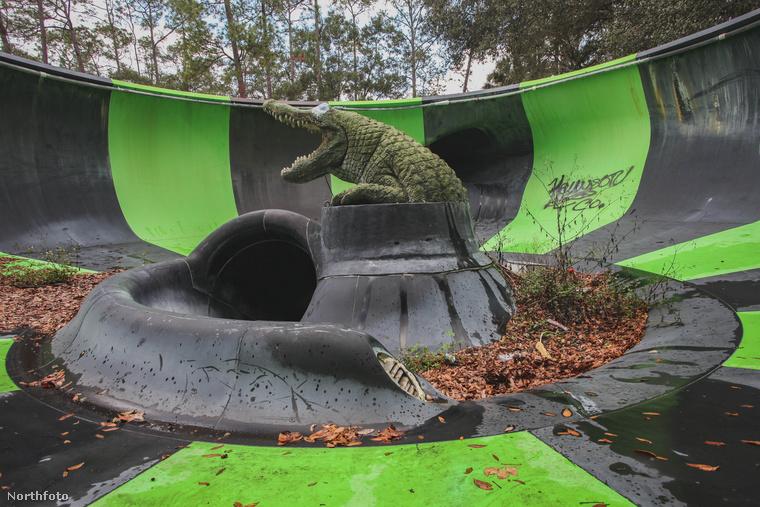 Itt némi Jurassic Parkos légkör kaphatja el a kép nézőit, pedig ez csak egy krokodil.