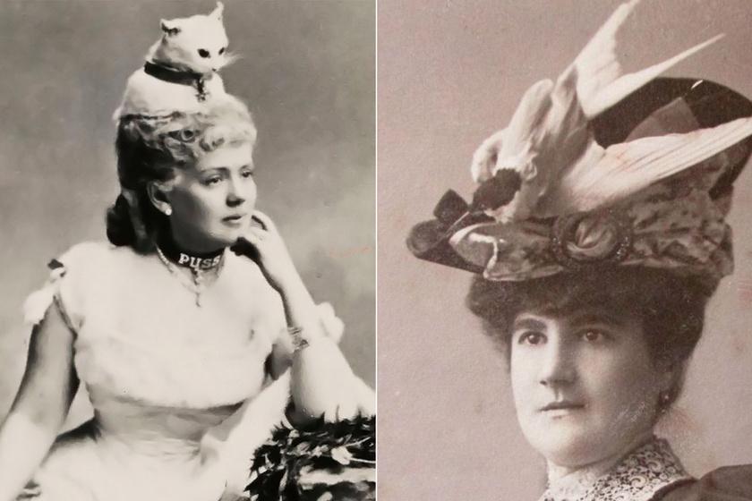 Kitömött állatok díszítették a viktoriánus nők kalapját: imádták a horrorfilmbe illő darabokat