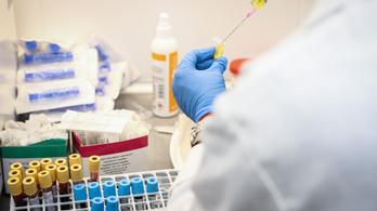 11 új fertőzött, az aktív esetek száma 557