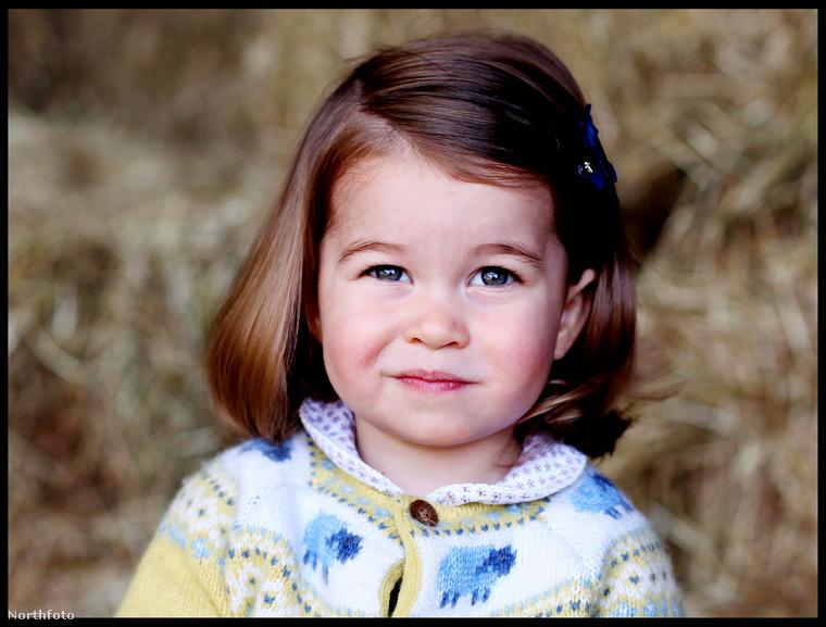 Ez pedig már a hercegnő második születésnapjára kiadott rojál portré, ezt is Katalin készítette.