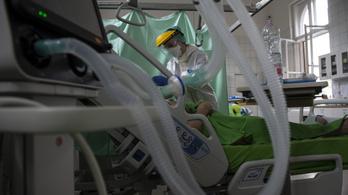 Elhunyt újabb 12 beteg, 2942 főre nőtt a beazonosított koronavírusos fertőzöttek száma