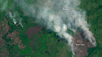 Rekordszámú tűz lobbant lángra a világ legnagyobb mocsaras területén