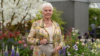 Judi Dench lett a brit Vogue legidősebb címlaplánya