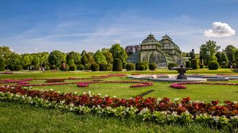 Bécs lett a világ legzöldebb városa