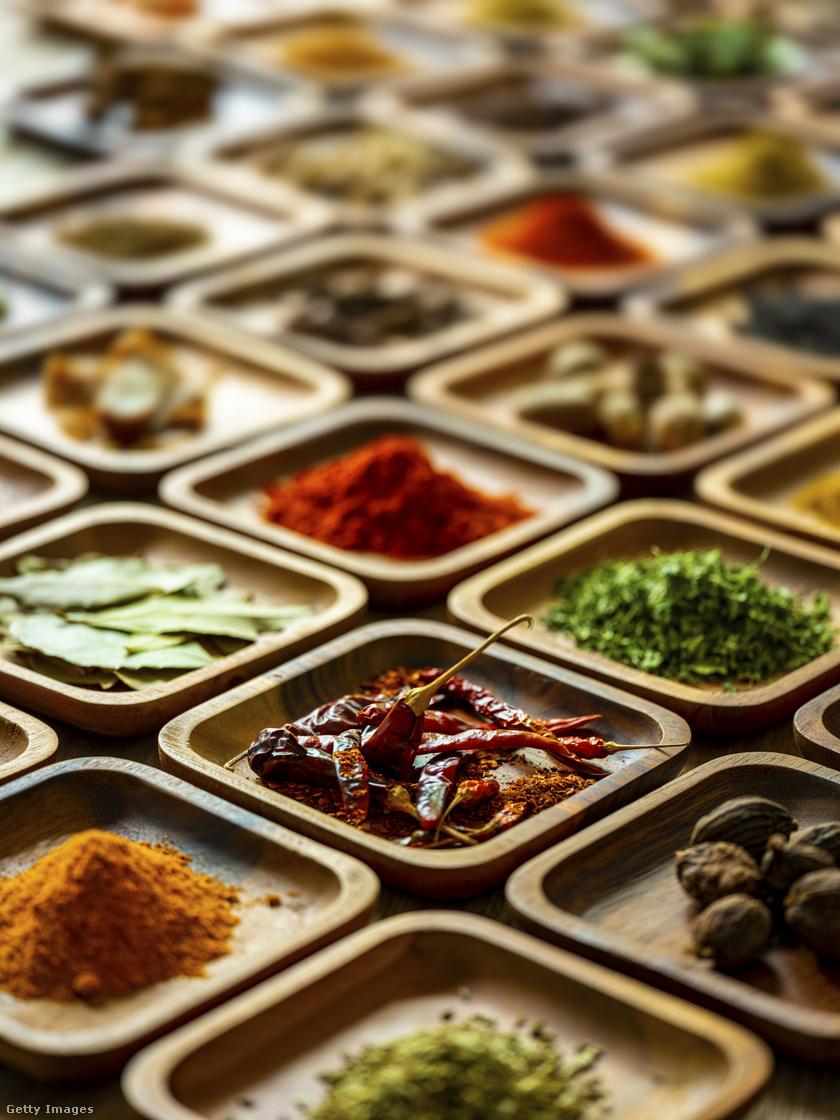 hindu-dieta2