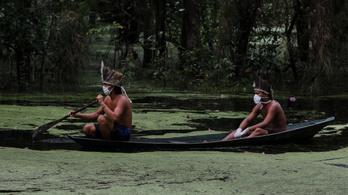 A brazil bennszülöttek szerint a kormány az Amazónia elleni támadásra használja a járványt