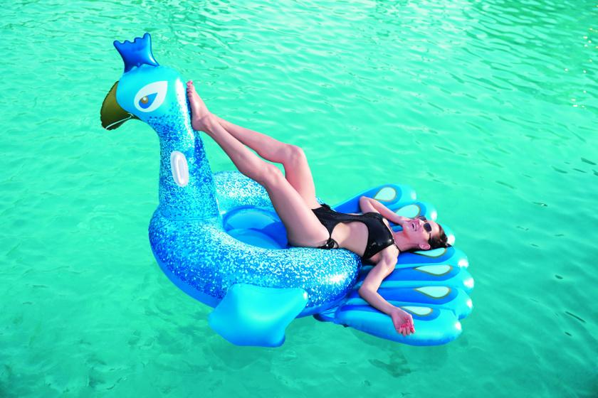 aqualing-rider