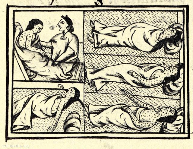 Fekete himlős beteg a 16. századi firenzei kódex XII. Könyvében
