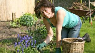Hogy kell úgy kertészkedni, hogy ne menjen tönkre a derekunk?