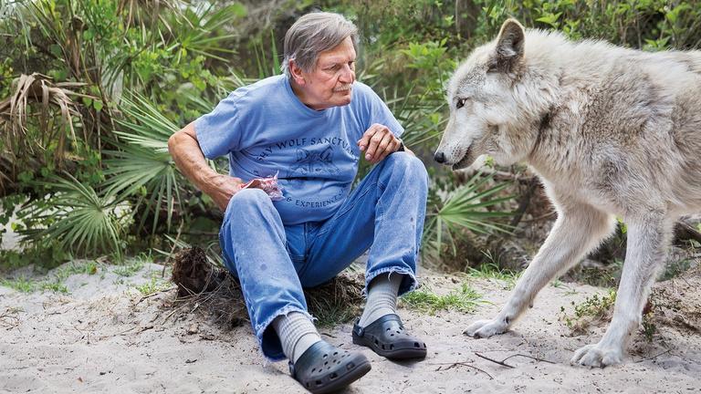 Emberek és állatok paradox viszonya