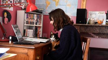 Puskázni nem ér: arcfelismerővel indulnak az online nyelvvizsgák