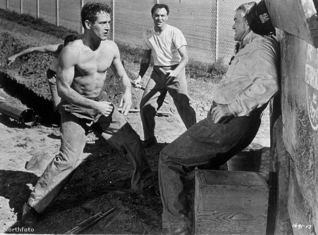 Paul Newman bokszol az 1956-os Valaki odaföntben