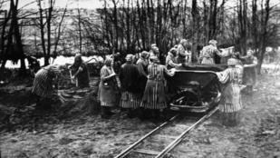 """""""Ordítottam a félelemtől"""" – a náci álorvosi kísérletek áldozatai a háború után"""