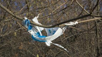 Törvénnyel tiltják be Magyarországon az egyszer használatos műanyagokat