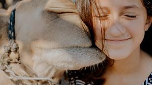 Jennifer Lopez 12 éves kislánya a lajhárok megmentéséért írt könyvet