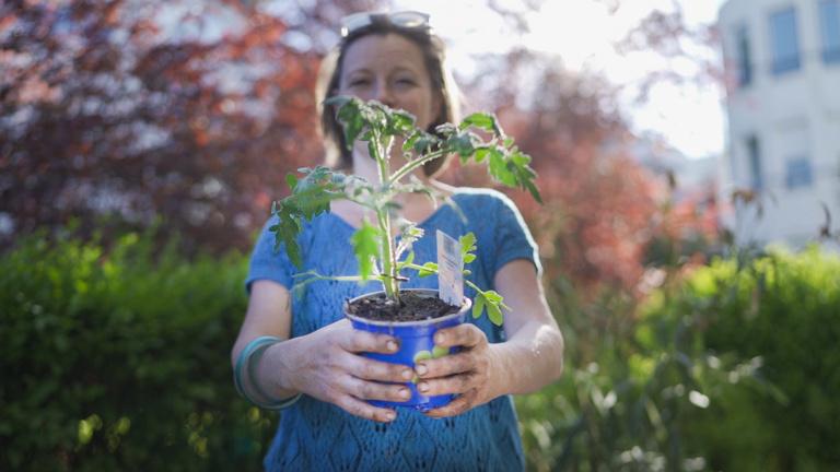 Megtanítunk otthon kertészkedni!