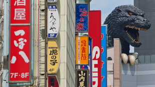 Megvan az iszonyatos pusztítás igazi felelőse: Japánban kapták el a tettest