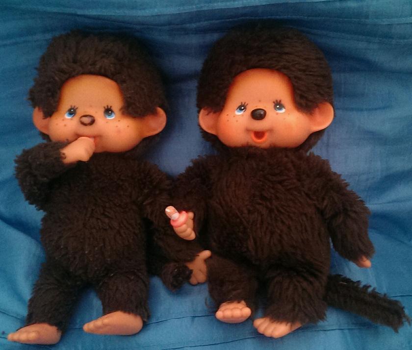 A '80-as évek egyik őrülete a szőrös majmocska, azaz a Moncsicsi volt, amit a japán Kóicsi Szekigucsinak köszönhet a világ.