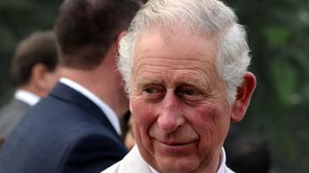 Károly herceg a földekre küldené a brit fiatalokat