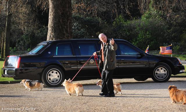 II. Erzsébet kutyái Barack Obama limuzinjához igyekeznek 2009-ben