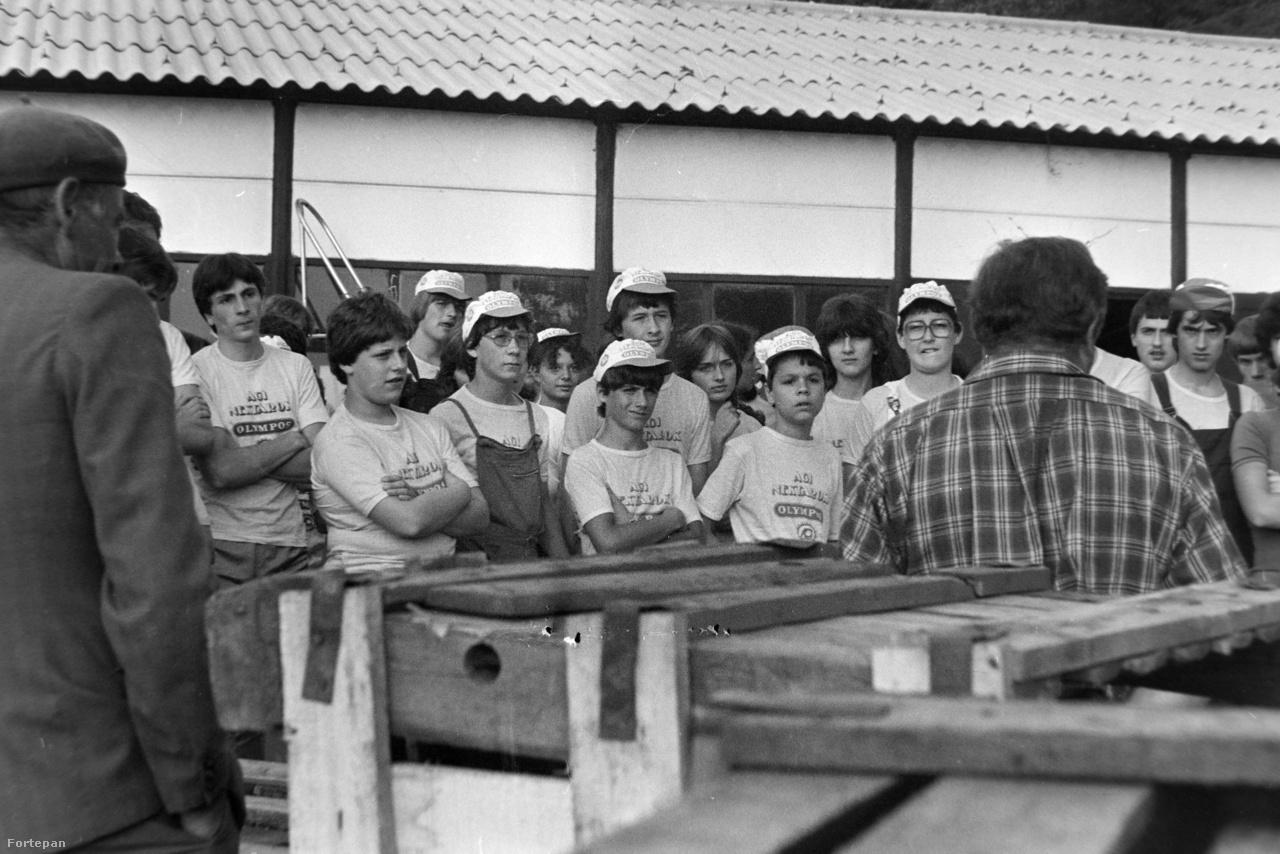 A téeszek dolgozói sem mindig nézték jó szemmel a diákokat, szerintük sokszor több kárt okoztak, mint amennyi hasznot hajtottak. Bár elméletben az iskolások munkabérét úgy állapították meg, hogy az megegyezzen az adott gazdaság fizikai dolgozóinak juttatásával, vagyis mondjuk egy kiló alma szedéséért egy diák ugyannyit kapjon, mint egy ottani melós, a gyakorlat gyakran mást mutatott.