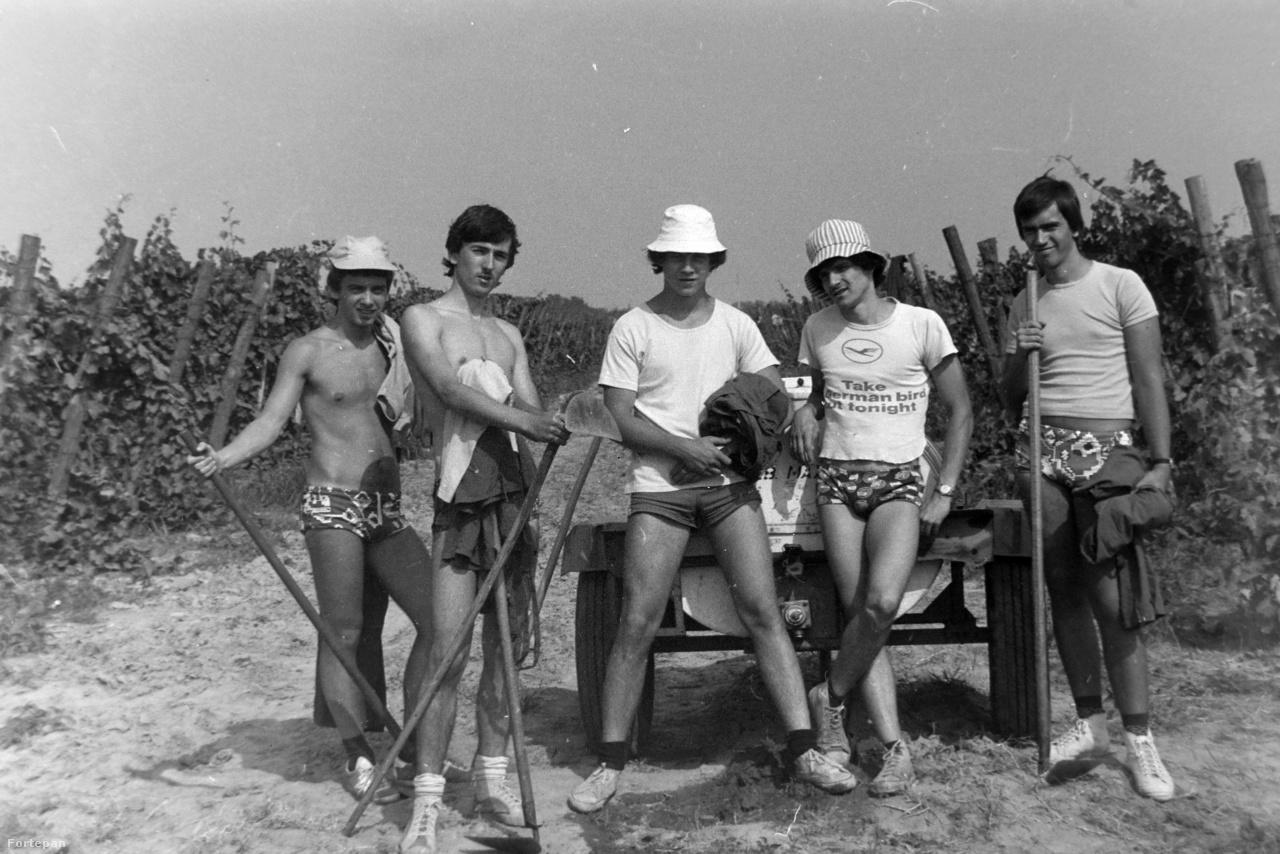 A nyolcvanas évek közepére az építőtáborok vonzereje csökkent, megkérdőjeleződött az ott folyó kommunista nevelés eredményessége is. A KISZ is változott, a brigádok már nem önfeláldozó szovjet háborús lányokról, hanem Som Lajosról és a Piramisról nevezték el magukat. Figyeljük meg a képen az öltözékeket: csehszlovák tornacipő, mintás fecskenadrág, valami menő póló, plusz egy idióta sapka, amit ugyan a szülő csempészett be titokban a bőröndbe, mégis hasznosnak bizonyult a tűző napon.