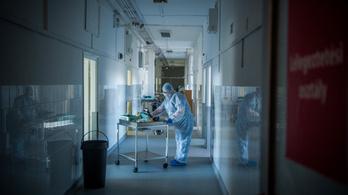 A BCG-oltás koronavírus elleni hatékonyságát kutatja a Korányi Pulmonológiai Intézet