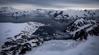 Műholdról vizsgálták, mekkora területen zöld a hó az Antarktiszon