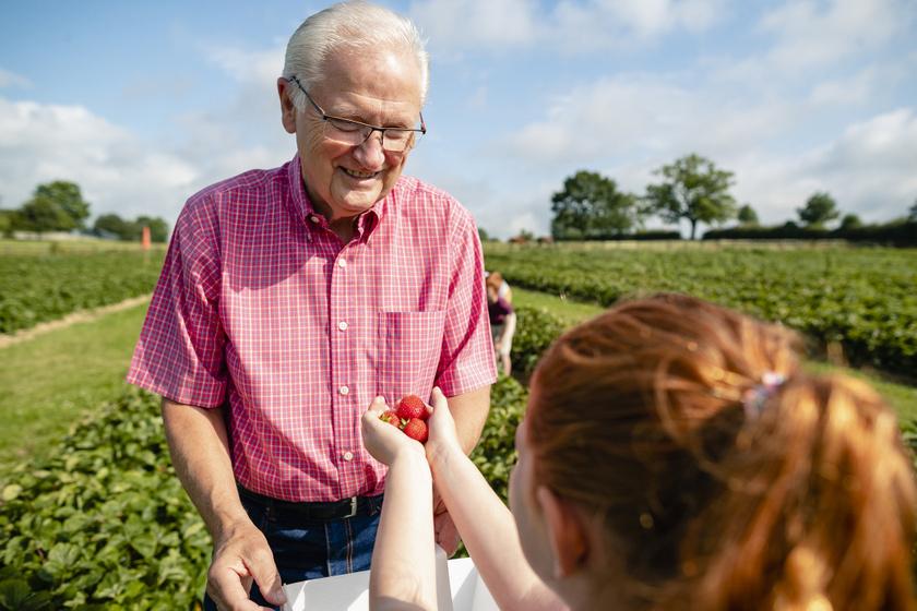 unoka-nagypapa-eperfold-szedd magad