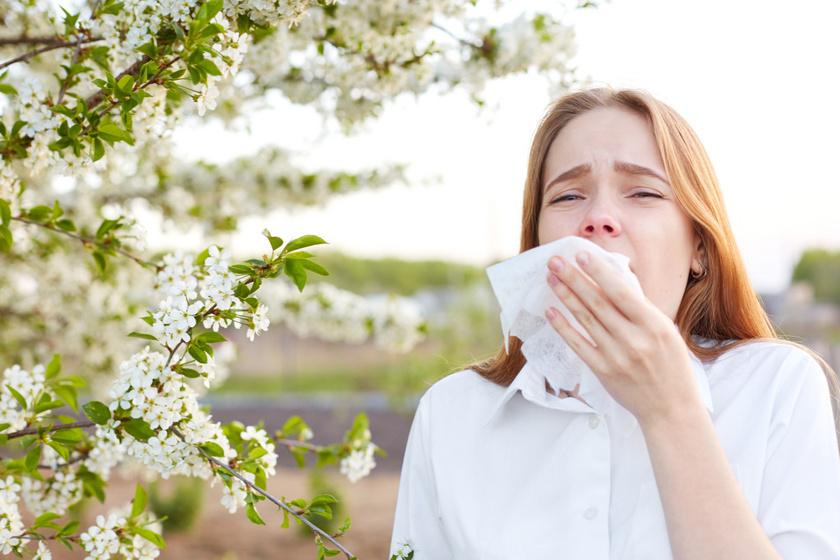 Egyre nehezebb lesz átvészelni az allergiaszezont: 20 éven belül duplájára nőhet a pollenszám