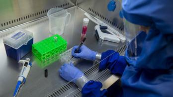 A koronavírus fertőzőbb mutációja terjed Magyarországon