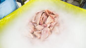 800 kiló szalmonellás lengyel csirkemájat hoztak Magyarországra