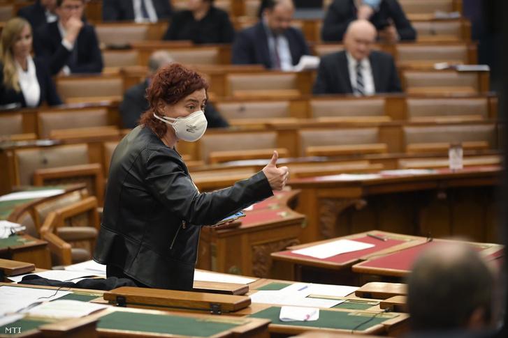 Vadai Ágnes DK-s képviselő a házszabálytól való eltérésrõl szóló szavazáson az Országgyűûlés plenáris ülésén 2020. március 23-án.