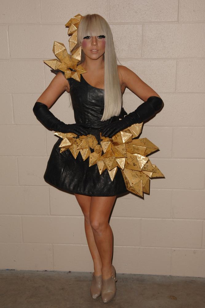 Első albuma, a The Fame (A hírnév) 2008-ban jelent meg, első kislemeze a Just Dance volt