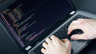 Közel 62 ezren jelentkeztek az állami programozóképzésre