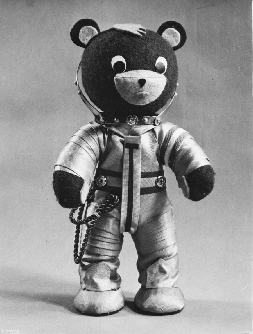 A Farkas Bertalalan űrutazása köré szőtt szocialista propaganda egyik ötlete az volt, hogy Berci űrhajós mondhatna egy mesét a magyar gyerekeknek a Szaljut űrállomás fedélzetéről, úgy, hogy vele van a tévémaci is. Hogy az erről készült filmfelvétel minél látványosabb legyen, a tévémacinak is készítettek szkafandert, ami a kép tanúsága szerint kifejezetten élethűre sikerült – nem is csoda, a tervező ugyanis hathetes tanulmányútra mehetett a Szovjetunióba, hogy saját szemével figyelhesse meg az autentikus kozmonautaruhát.